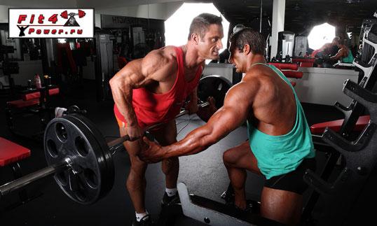 Эффективные упражнения на спину