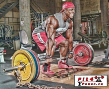 Базовые упражнения для спины