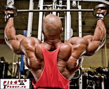 Изолирующие упражнения для широчайших мышц спины: тяга верхнего блока
